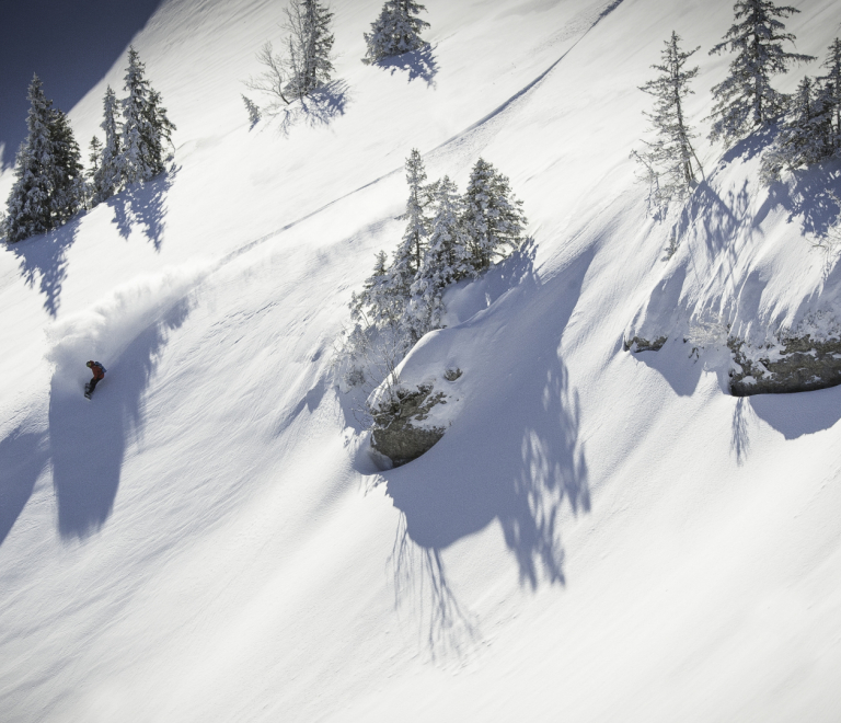 Freeride and ski touring